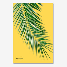 팜리프Y (PalmLeaf yellow)